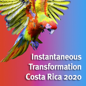 Instantaneous Transformation Costa Rica 2020